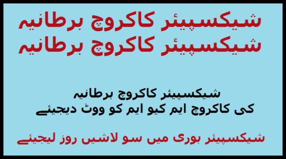 Wid_PK_U_Vote MQM_Take 100 Lash