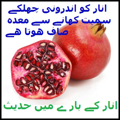 Wid_TN_U_Pomegranate