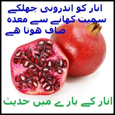 Wid_TN_U_Pomegranate