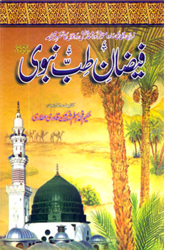 Wid_TN_U_T-Nabvi_Book Cover-2