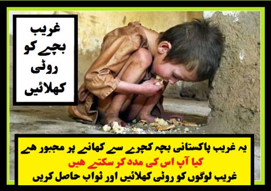 wid_feed-the-poor-kid